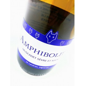 Amphibolite