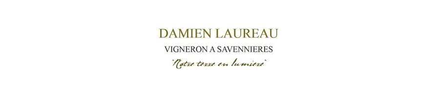 Domaine Damien Laureau